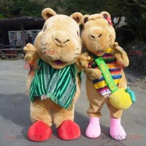 2 braune Murmeltier Meerschweinchen Maskottchen - Redbrokoly.com