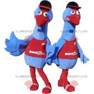 2 mascots of blue birds. 2 ostrich costumes - Redbrokoly.com