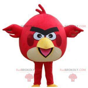 Rotes und weißes Vogelmaskottchen der wütenden Vögel -