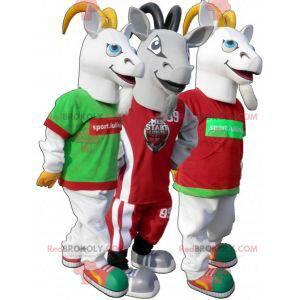 Maskot sportovní koza. Šedý kozí oblek ve sportovním oblečení -