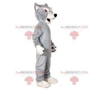 Šedý a bílý vlk maskot. Vlk pes maskot - Redbrokoly.com