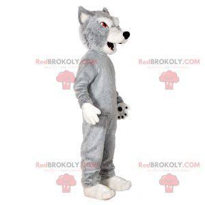 Grå og hvit ulvemaskot. Ulvhundmaskot - Redbrokoly.com