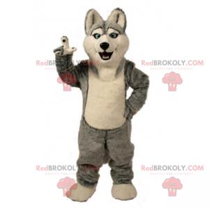Ice floe animal mascot - Husky - Redbrokoly.com