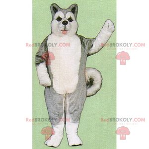 Ice floe animal mascot - Gray Husky - Redbrokoly.com