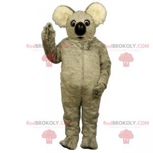 Vilde dyr maskot - Blød koala - Redbrokoly.com