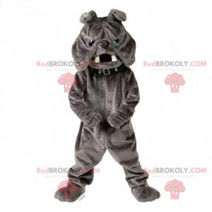 Graues Bulldoggenmaskottchen mit Kragen - Redbrokoly.com