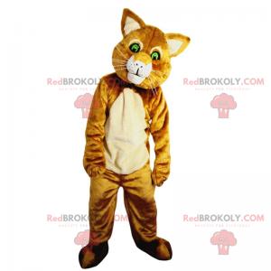 Kot maskotka z zielonymi oczami - Redbrokoly.com