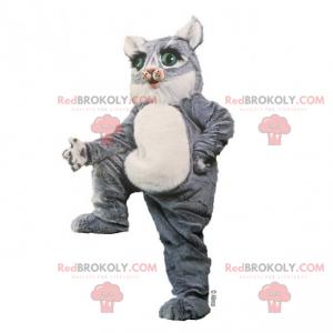 Graues Kätzchenmaskottchen mit grünen Augen - Redbrokoly.com