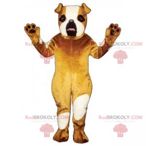 Hundemaskot - engelsk bulldog - Redbrokoly.com