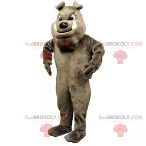 Dog mascot - Gray English Bulldog - Redbrokoly.com