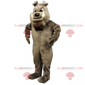 Hundemaskottchen - Graue englische Bulldogge - Redbrokoly.com