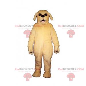 Dog mascot - Golden Retriever - Redbrokoly.com