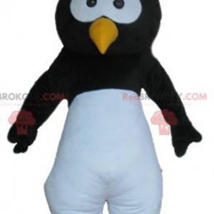 Mascote pássaro pinguim preto branco e amarelo - Redbrokoly.com
