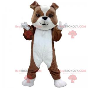 Little bulldog puppy mascot - Redbrokoly.com