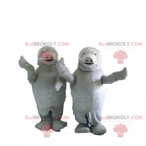Mascotte duo grijze zeeleeuw - Redbrokoly.com