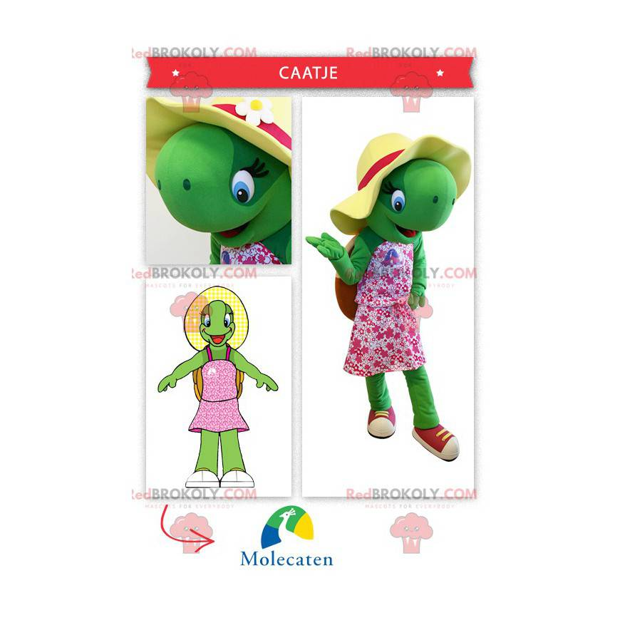 Docela zelená želva maskot - Redbrokoly.com