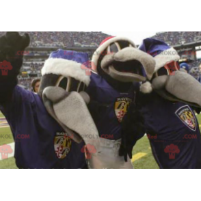 3 mascots of gray and black crows - Redbrokoly.com