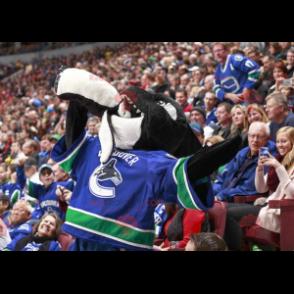 Schwarz-Weiß-Killerwal-Maskottchen in Hockeyausrüstung -