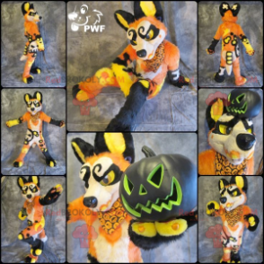 Very original orange yellow white and black dog mascot -
