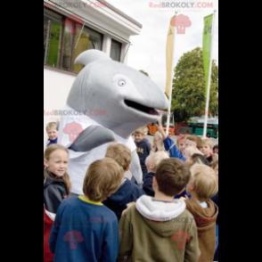 Grauwal-Delphin-Maskottchen - Redbrokoly.com