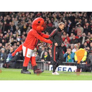 Red bear mascot in sportswear - Redbrokoly.com