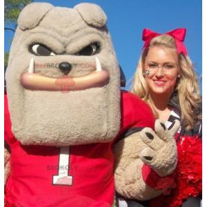 Very muscular beige bulldog mascot - Redbrokoly.com
