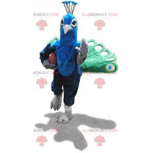 Green and blue peacock mascot - Redbrokoly.com
