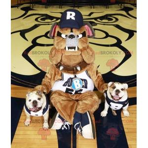 Very realistic brown gray and black bulldog mascot -