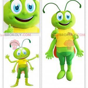 Green grasshopper locust mascot - Redbrokoly.com