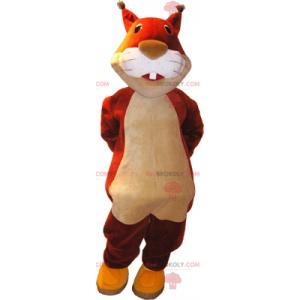 Zrzavá veverka maskot - Redbrokoly.com