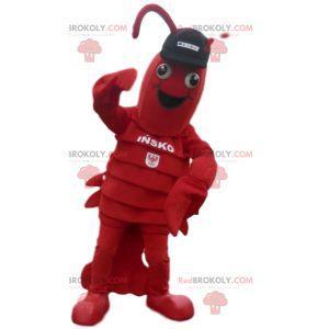 Kreeft mascotte met zwarte dop