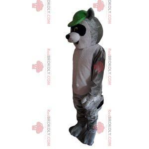 Maskotka szop pracz z zieloną czapką