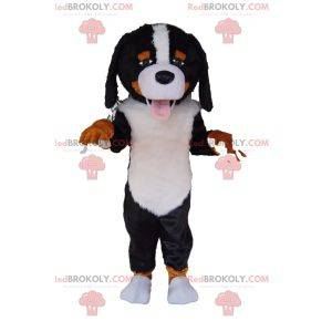 Very friendly Saint Bernard mascot