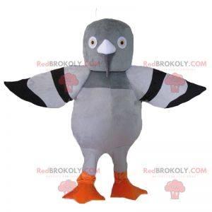 Šedý a černý holub maskot