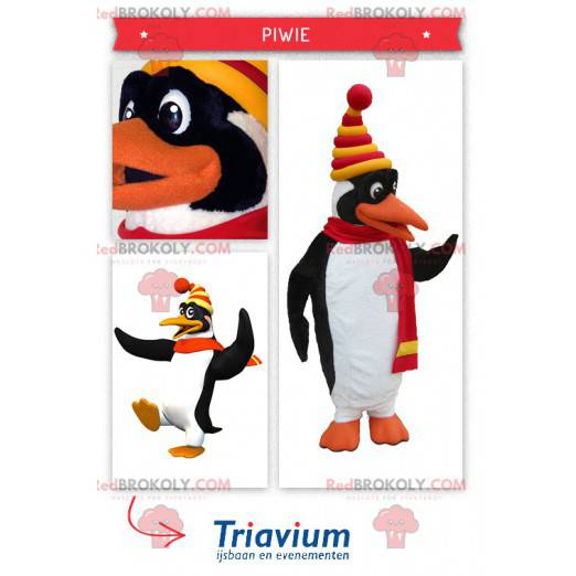 Mascot cute white and black penguin dressed in winter clothes -