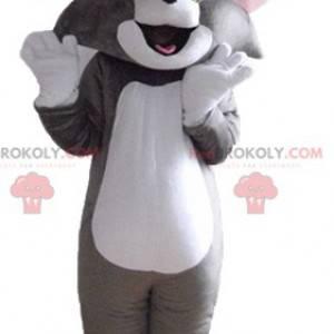 Mascote Tom, o famoso gato cinza e branco do Looney Tunes -
