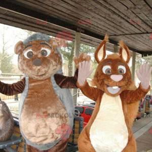 Mascotte di riccio e scoiattolo - Redbrokoly.com