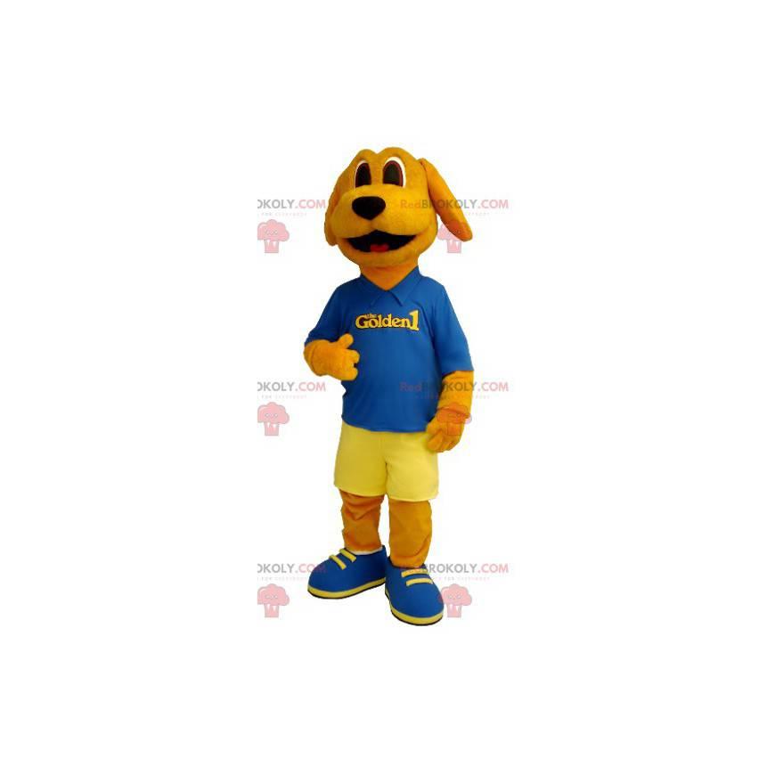 Pomarańczowy pies maskotka ubrany na niebiesko i żółto -