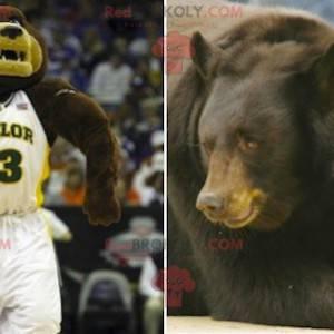 Brązowy i beżowy niedźwiedź maskotka w odzieży sportowej -