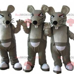 3 maskoter med grå og hvite rotter i kjeledress - Redbrokoly.com