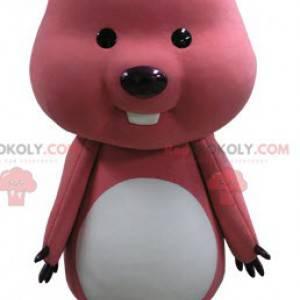 Růžový a bílý Marmot Bobr maskot - Redbrokoly.com