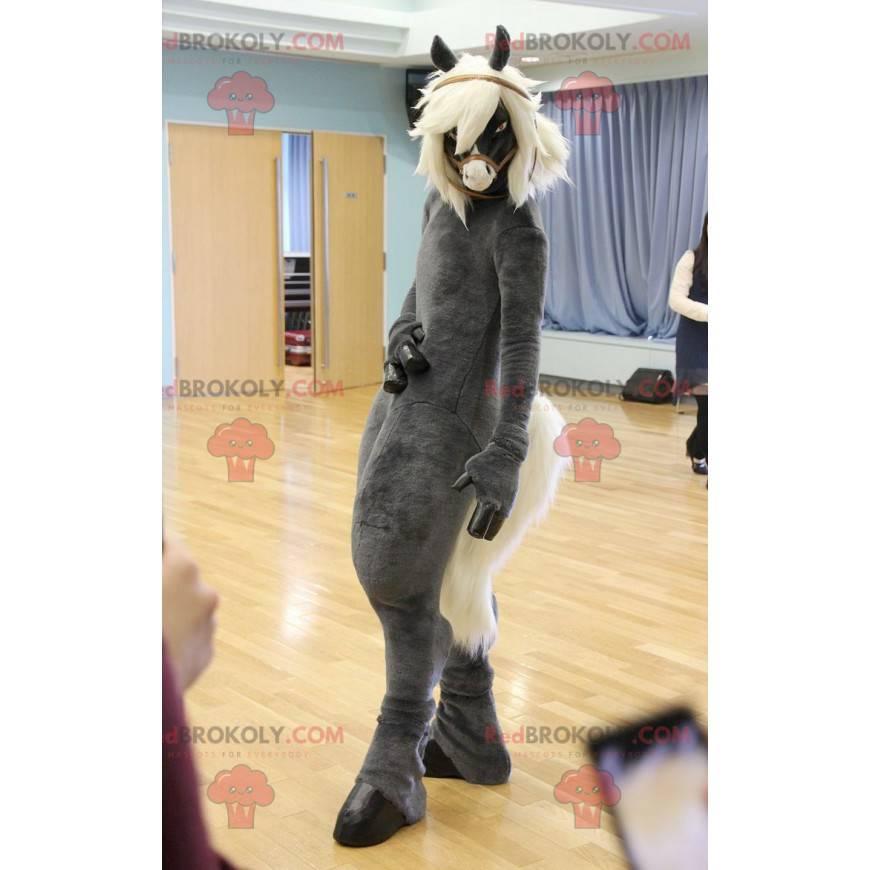 Gray and white mare horse mascot - Redbrokoly.com