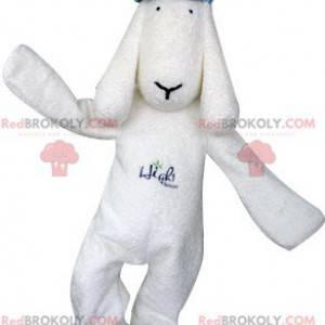 Weißes Hundemaskottchen mit einer blauen Baskenmütze -
