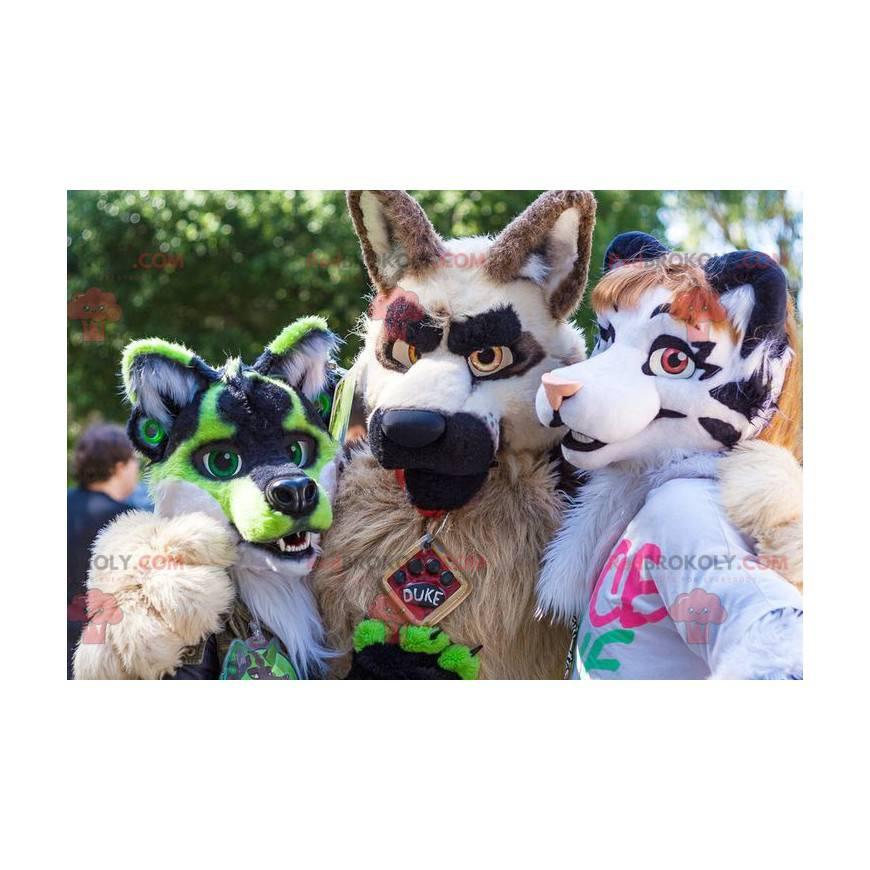 3 chlupatí a barevní psí maskoti - Redbrokoly.com