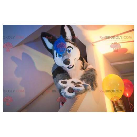 Cat mascot gray black white and blue dog - Redbrokoly.com