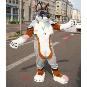 Sehr haariges graues und weißbraunes Hundemaskottchen -