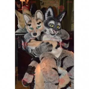 2 soft and furry cat and dog mascots - Redbrokoly.com