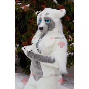 Vlk pes maskot s modrýma očima - Redbrokoly.com
