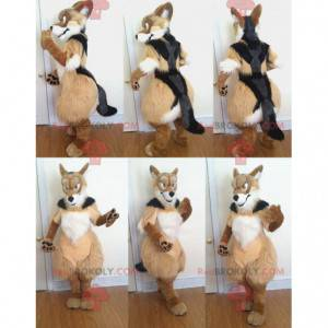 Tricolor hairy dog mascot - Redbrokoly.com