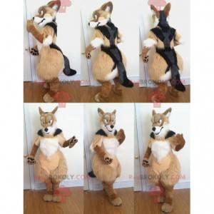 Trikolorní chlupatý pes maskot - Redbrokoly.com
